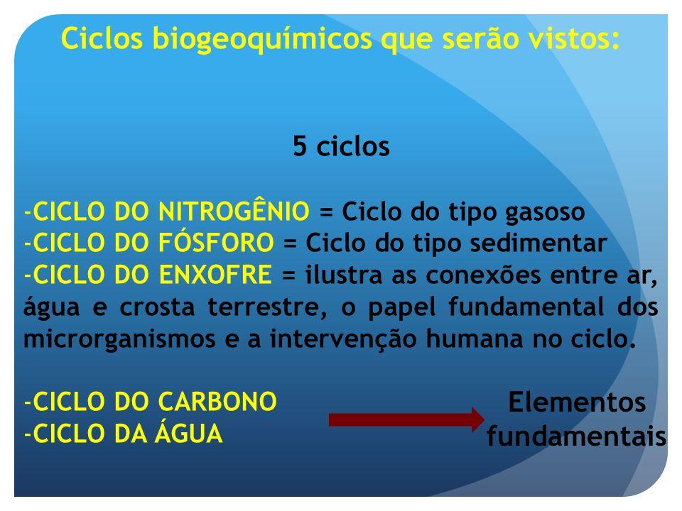 Ciclos biogeoquímicos que serão vistos: Elementos fundamentais