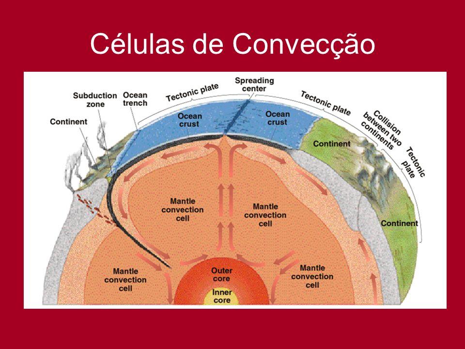Células de Convecção