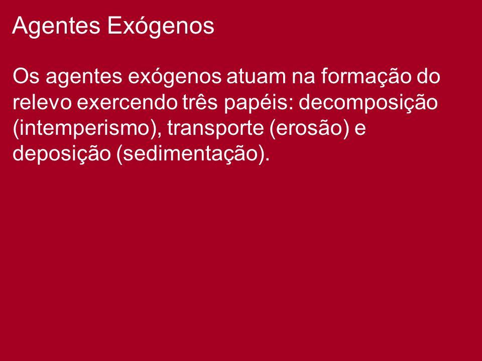 Agentes Exógenos