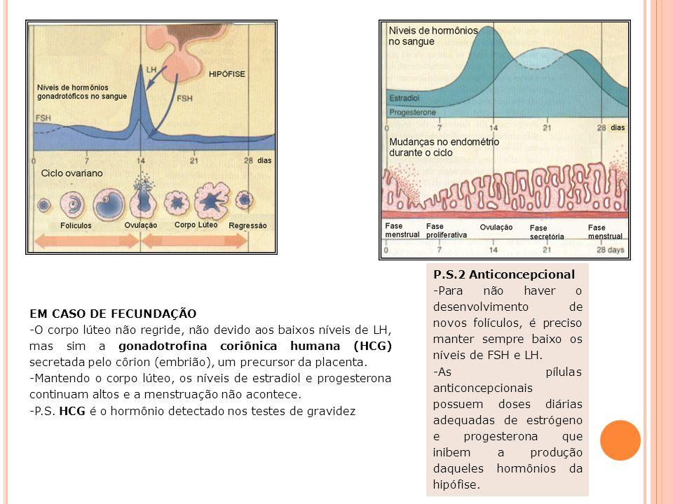 P.S.2 Anticoncepcional Para não haver o desenvolvimento de novos folículos, é preciso manter sempre baixo os níveis de FSH e LH.