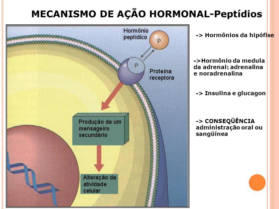 MECANISMO DE AÇÃO HORMONAL-Peptídios
