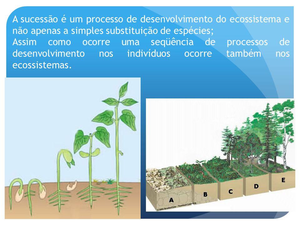 A sucessão é um processo de desenvolvimento do ecossistema e não apenas a simples substituição de espécies;