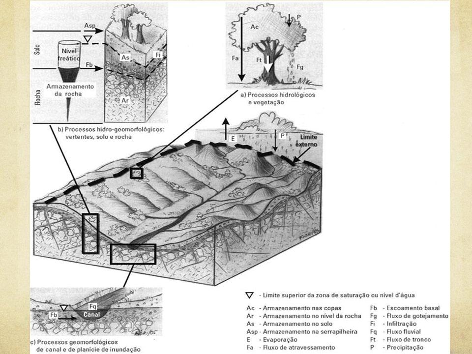 Bacia Hidrográfica: limites e processos. Org. : Rodrigues, C