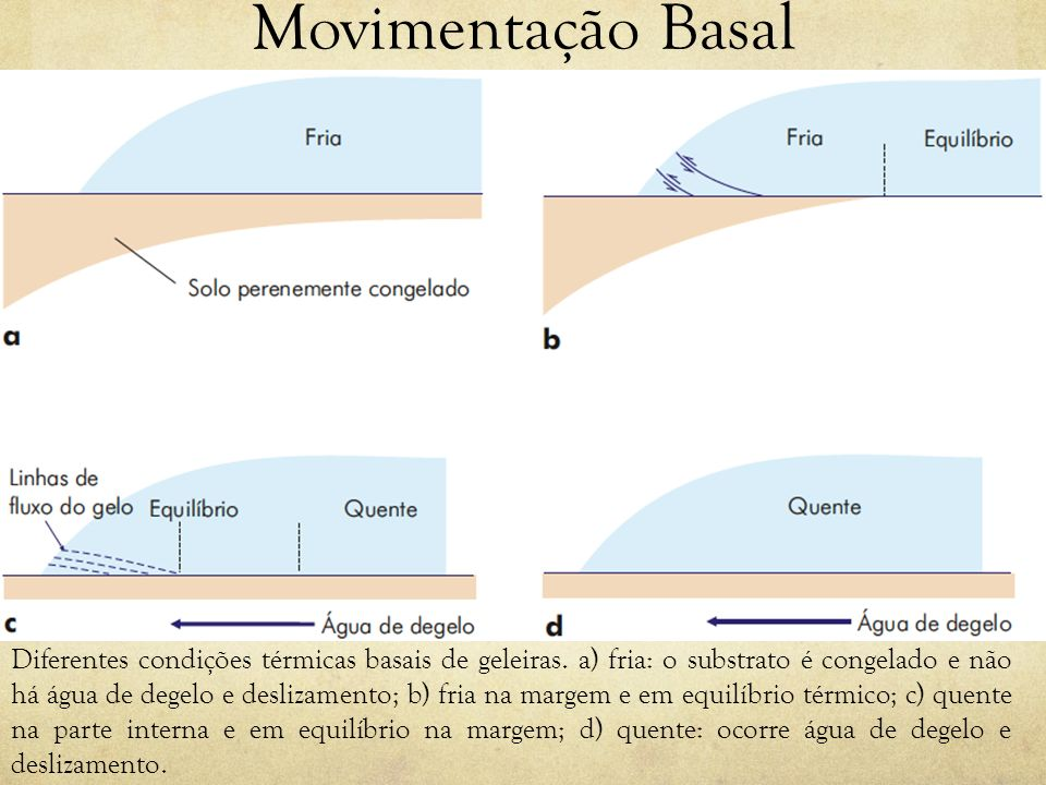Movimentação Basal