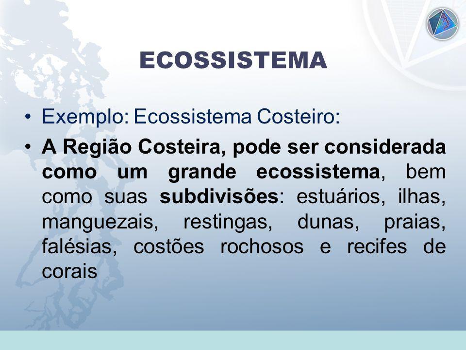 ECOSSISTEMA Exemplo: Ecossistema Costeiro: