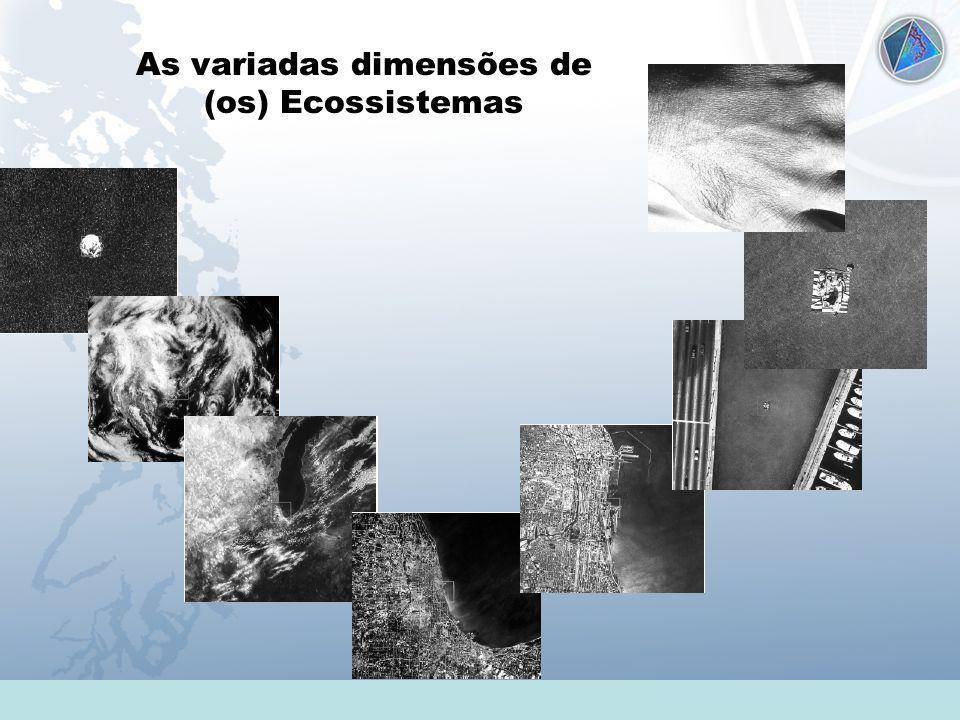 As variadas dimensões de (os) Ecossistemas