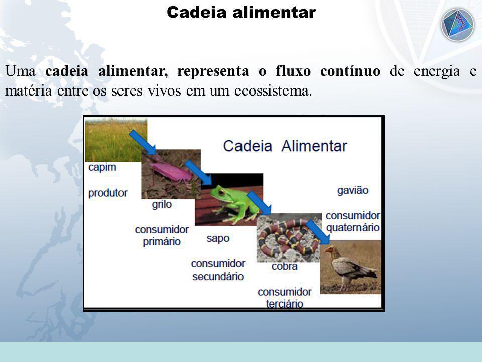Cadeia alimentar Uma cadeia alimentar, representa o fluxo contínuo de energia e matéria entre os seres vivos em um ecossistema.