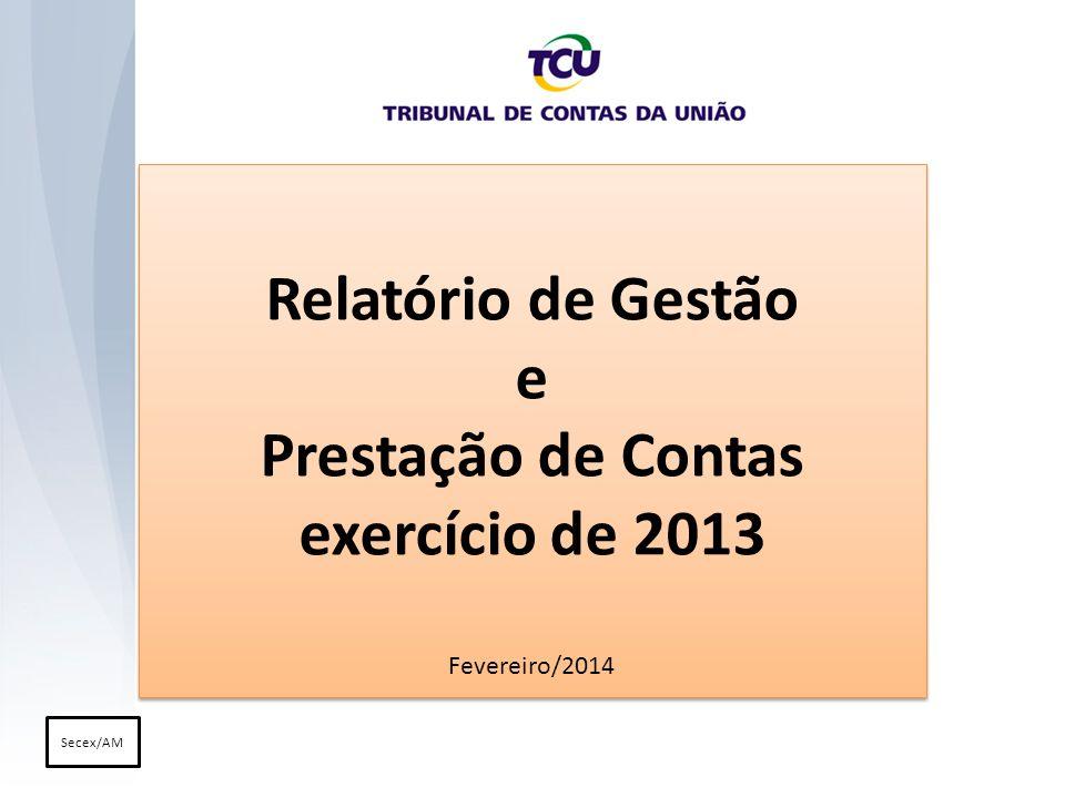 Relatório de Gestão e Prestação de Contas exercício de 2013