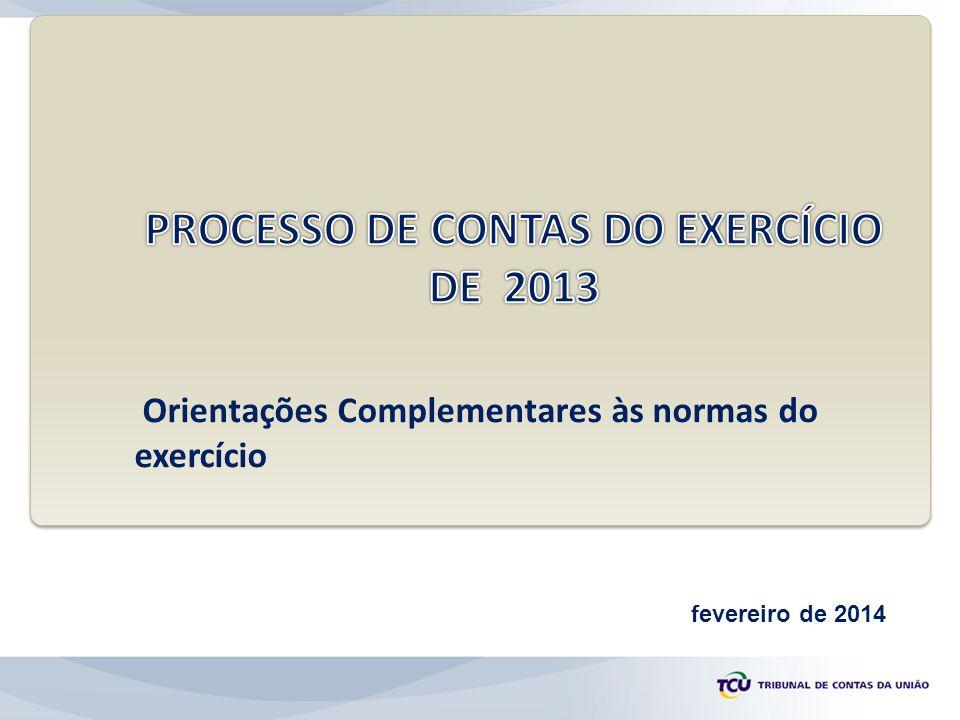PROCESSO DE CONTAS DO EXERCÍCIO DE 2013