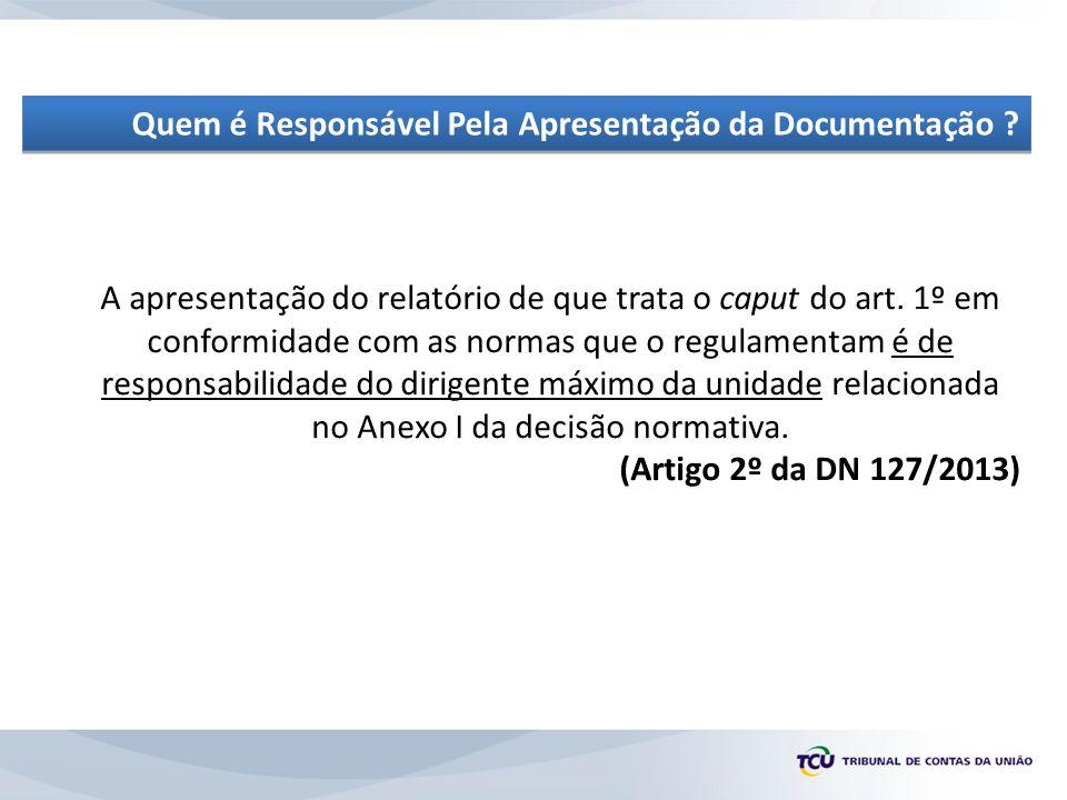 Quem é Responsável Pela Apresentação da Documentação