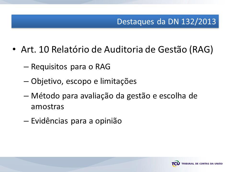 Art. 10 Relatório de Auditoria de Gestão (RAG)