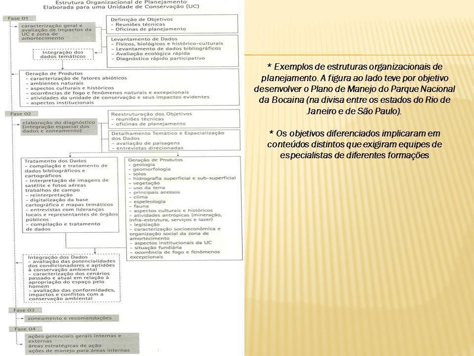 Exemplos de estruturas organizacionais de planejamento