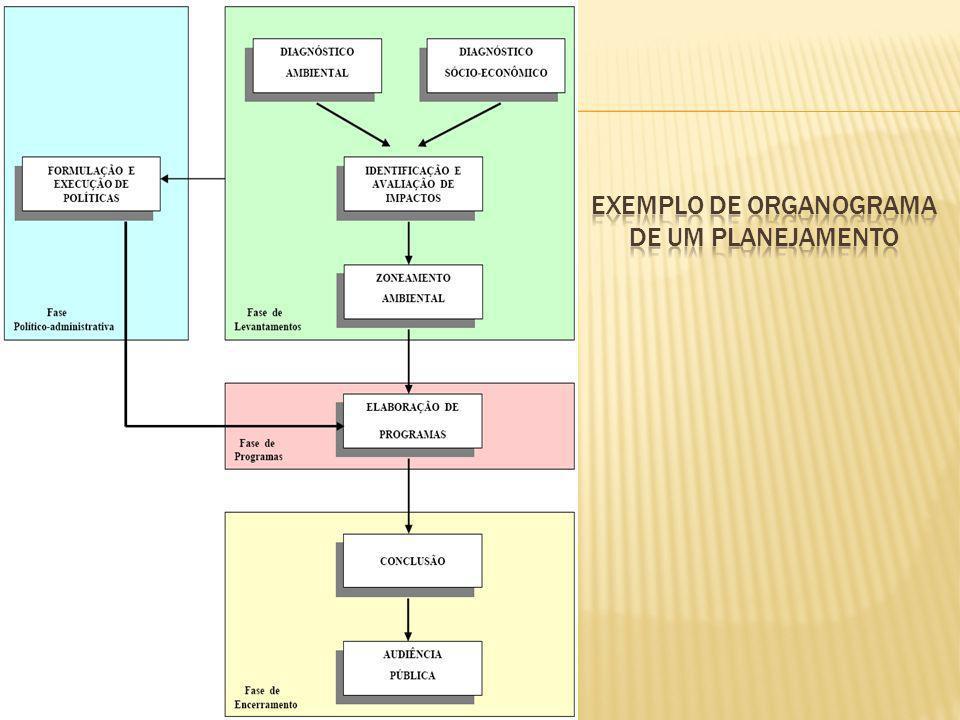Exemplo de Organograma de um planejamento