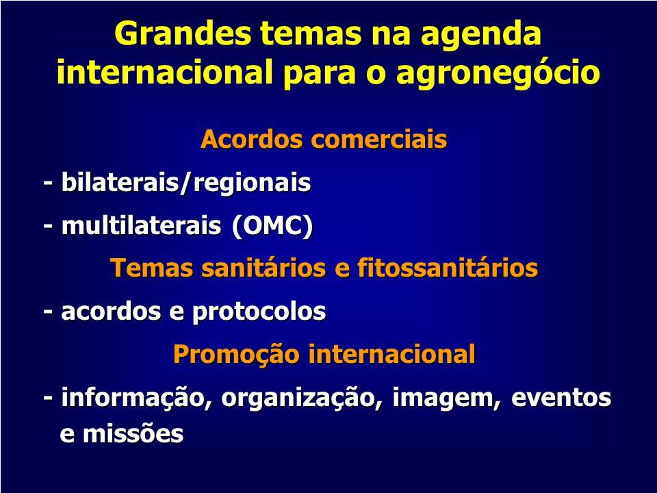 Grandes temas na agenda internacional para o agronegócio