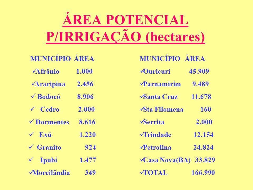 ÁREA POTENCIAL P/IRRIGAÇÃO (hectares)