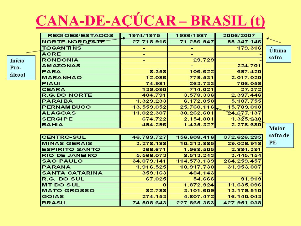 CANA-DE-AÇÚCAR – BRASIL (t)