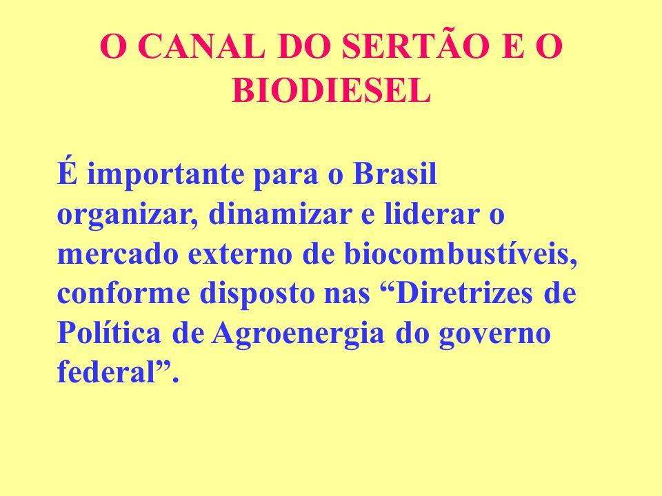 O CANAL DO SERTÃO E O BIODIESEL