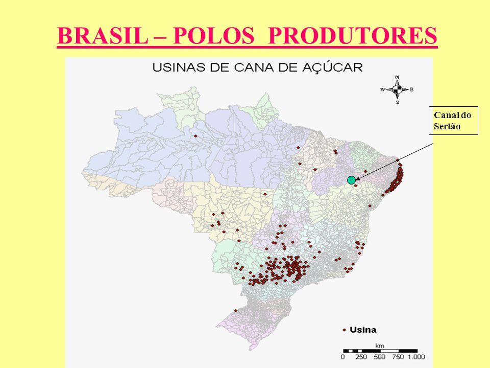BRASIL – POLOS PRODUTORES
