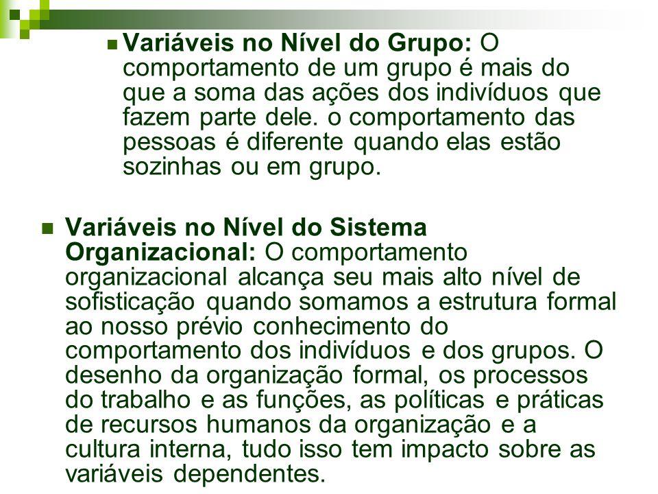 Variáveis no Nível do Grupo: O comportamento de um grupo é mais do que a soma das ações dos indivíduos que fazem parte dele. o comportamento das pessoas é diferente quando elas estão sozinhas ou em grupo.