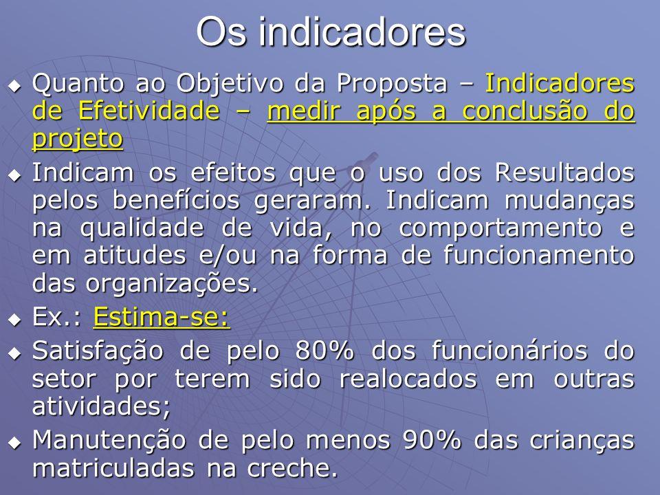 Os indicadores Quanto ao Objetivo da Proposta – Indicadores de Efetividade – medir após a conclusão do projeto.