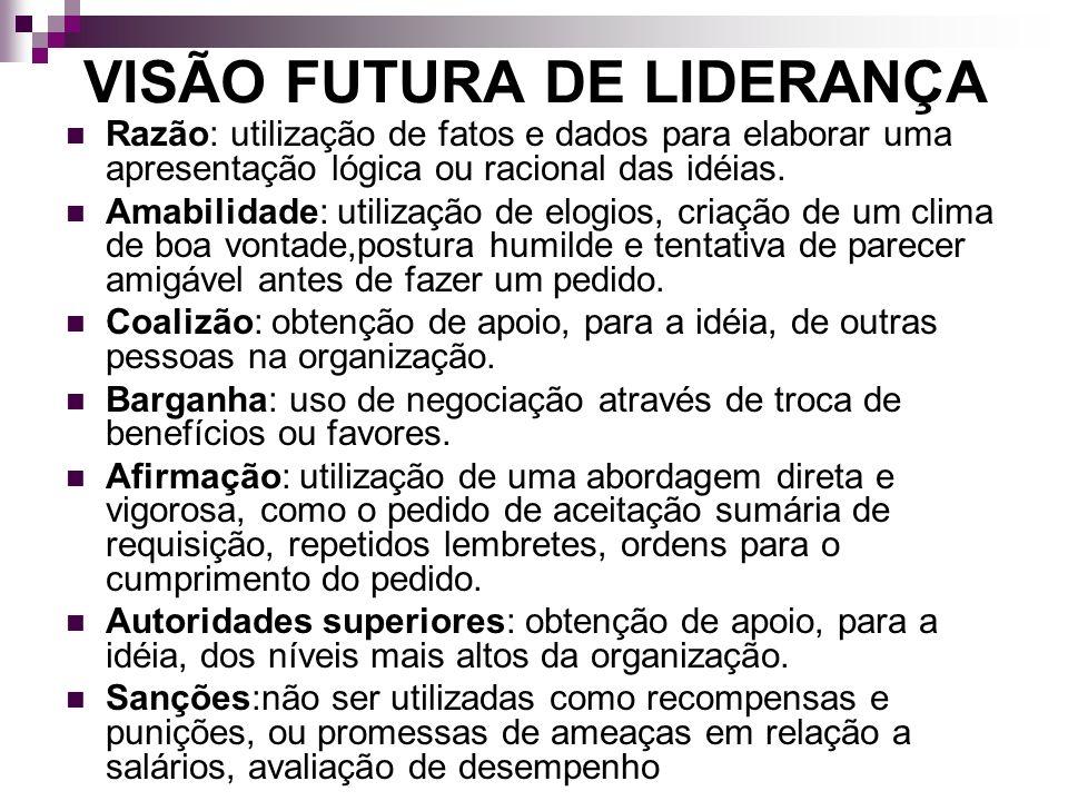 VISÃO FUTURA DE LIDERANÇA