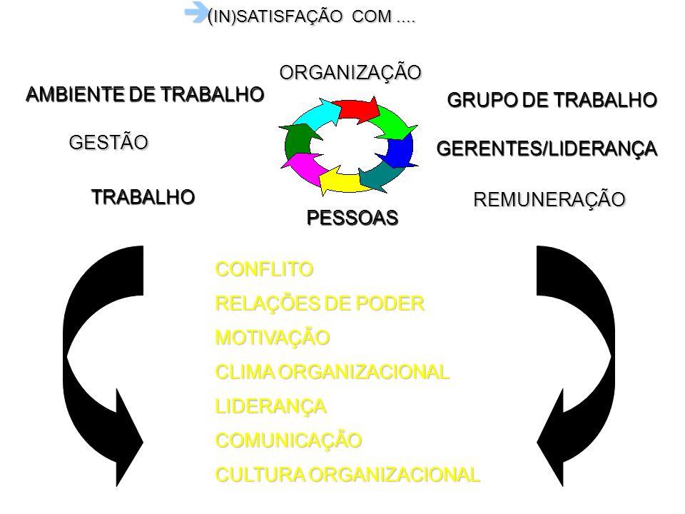 (IN)SATISFAÇÃO COM ....ORGANIZAÇÃO. AMBIENTE DE TRABALHO. GRUPO DE TRABALHO. GESTÃO. GERENTES/LIDERANÇA.