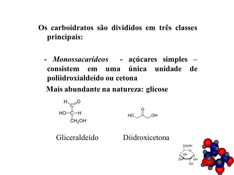 Os carboidratos são divididos em três classes principais: