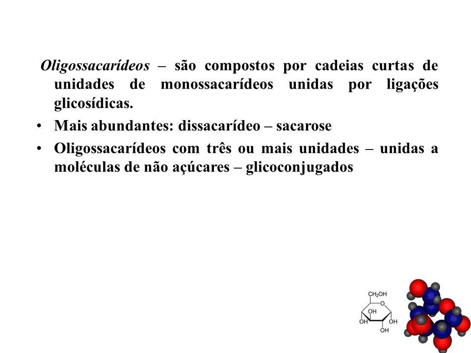 Oligossacarídeos – são compostos por cadeias curtas de unidades de monossacarídeos unidas por ligações glicosídicas.