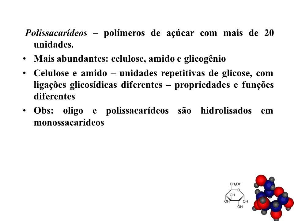 Polissacarídeos – polímeros de açúcar com mais de 20 unidades.