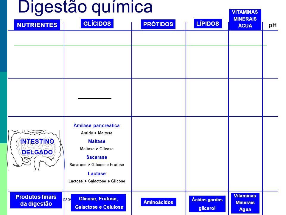 Sacarose > Glicose e Frutose Lactose > Galactose e Glicose