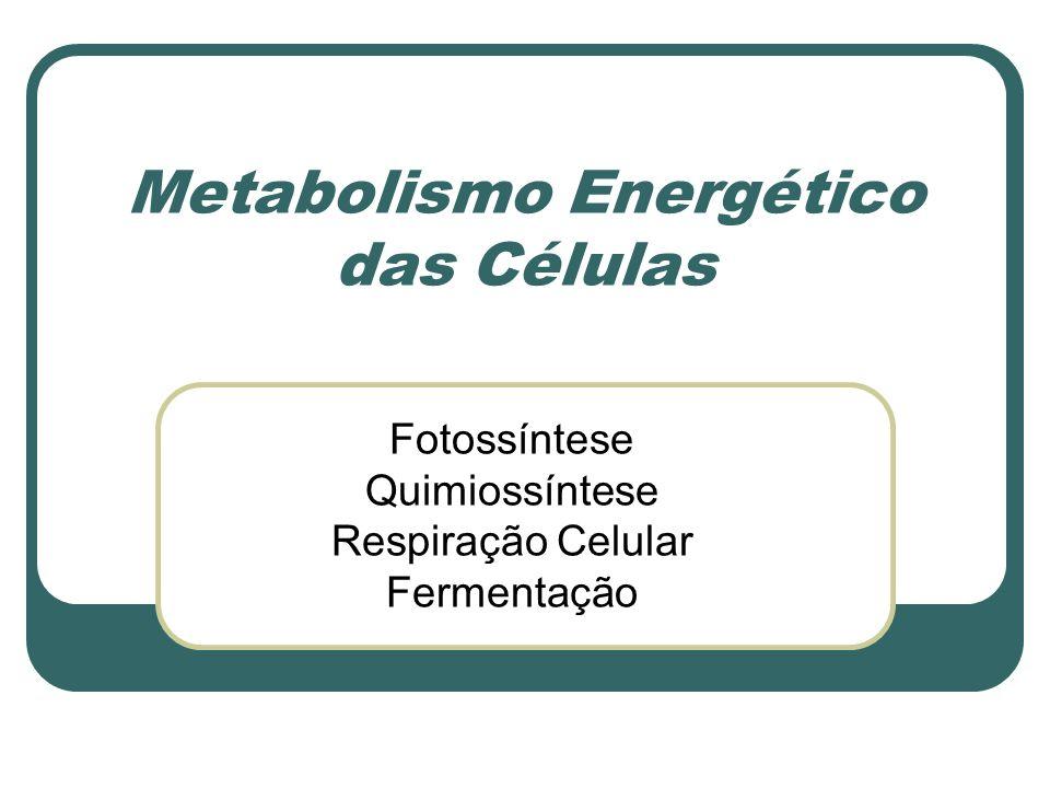 Metabolismo Energético das Células