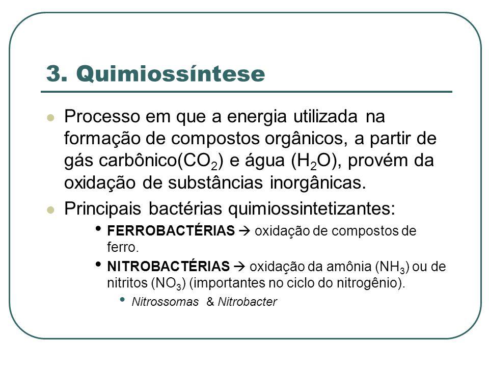 3. Quimiossíntese