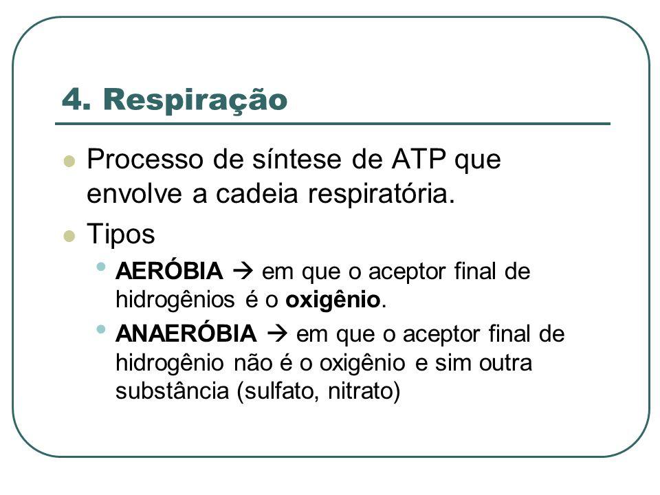 4. Respiração Processo de síntese de ATP que envolve a cadeia respiratória. Tipos. AERÓBIA  em que o aceptor final de hidrogênios é o oxigênio.