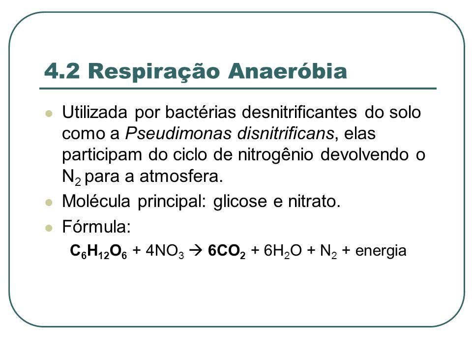 C6H12O6 + 4NO3  6CO2 + 6H2O + N2 + energia