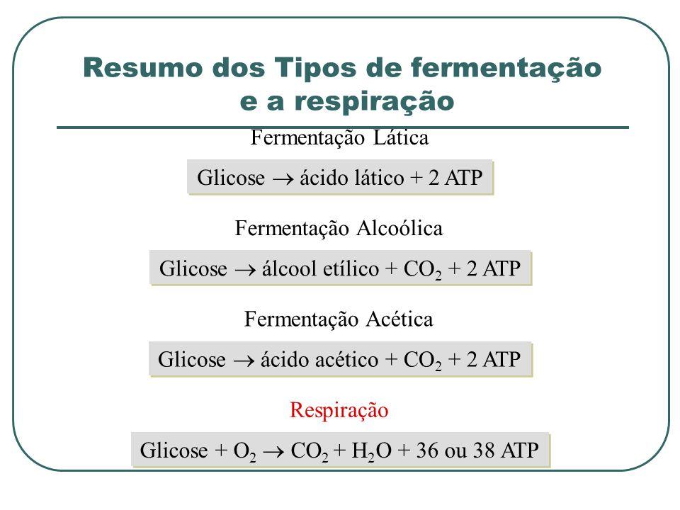 Resumo dos Tipos de fermentação e a respiração