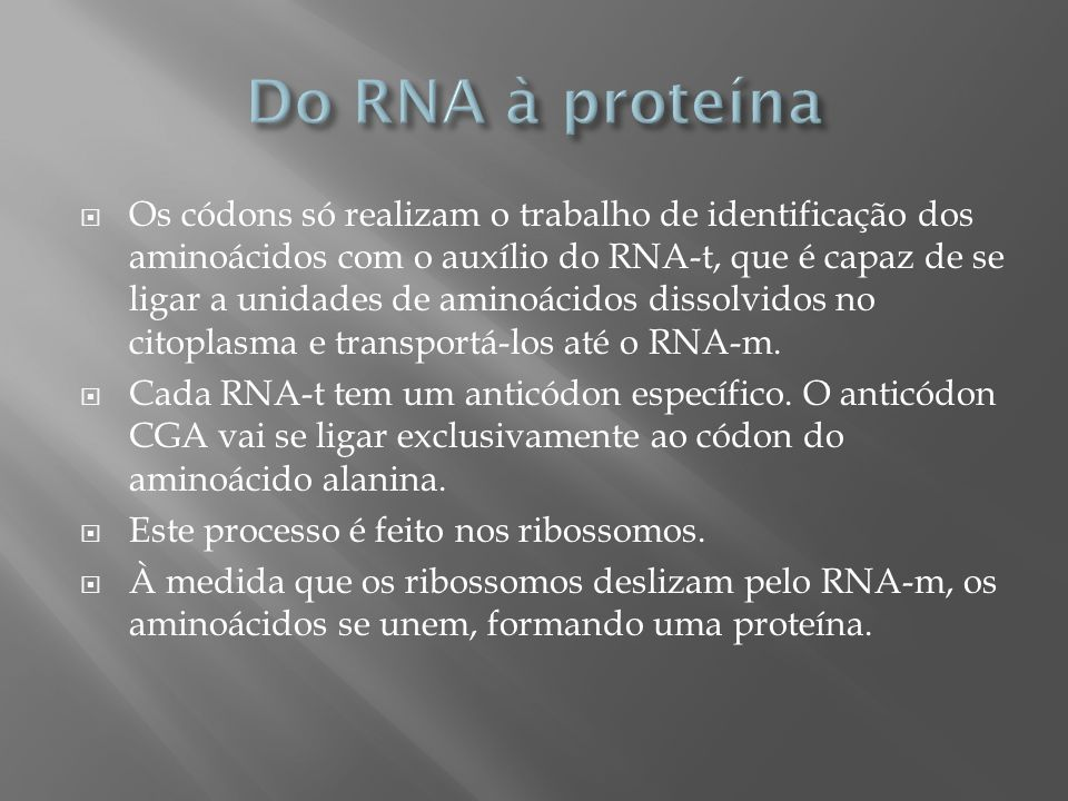 Do RNA à proteína