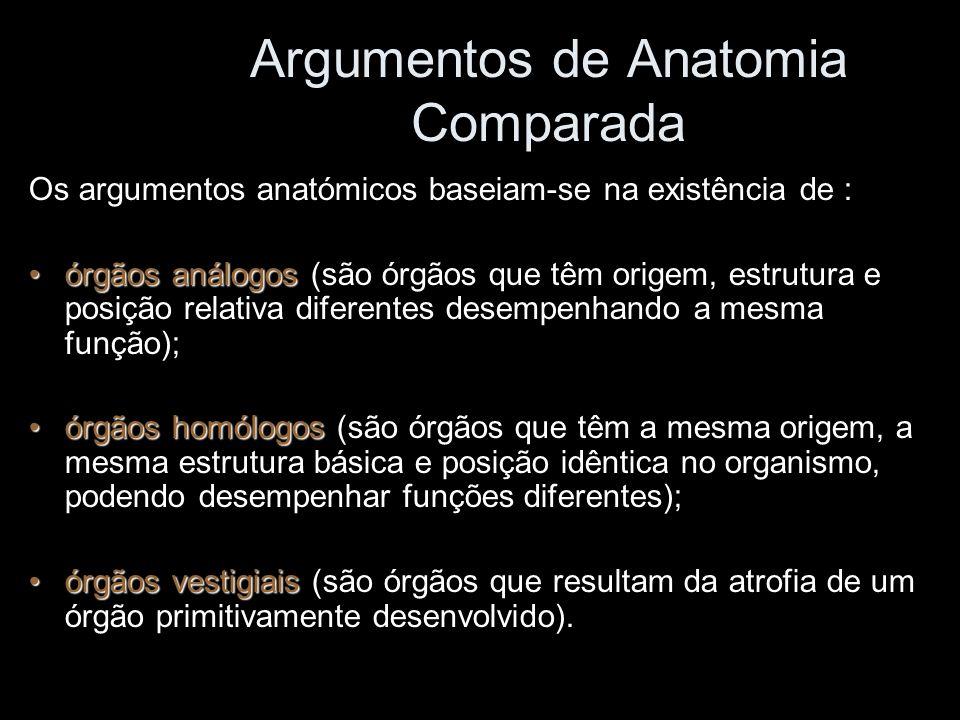 Argumentos de Anatomia Comparada