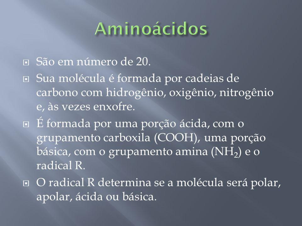 Aminoácidos São em número de 20.