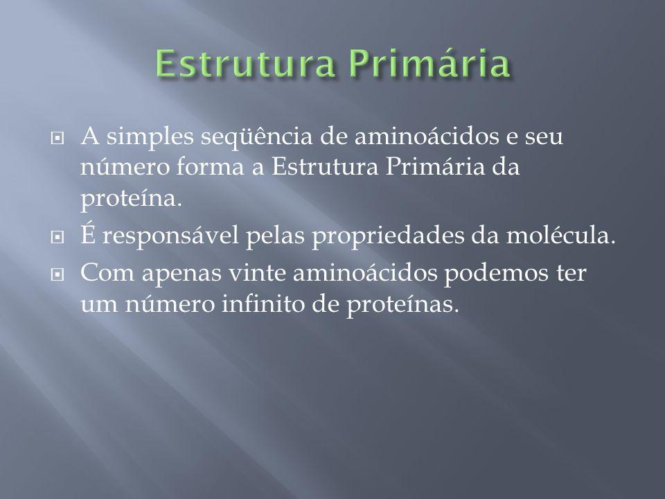 Estrutura PrimáriaA simples seqüência de aminoácidos e seu número forma a Estrutura Primária da proteína.