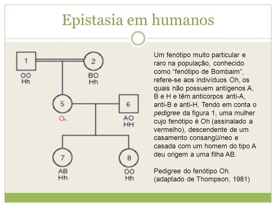 Epistasia em humanos