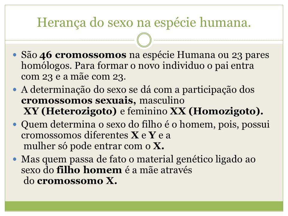 Herança do sexo na espécie humana.