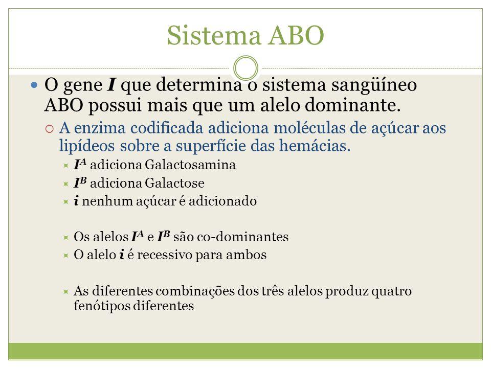 Sistema ABO O gene I que determina o sistema sangüíneo ABO possui mais que um alelo dominante.