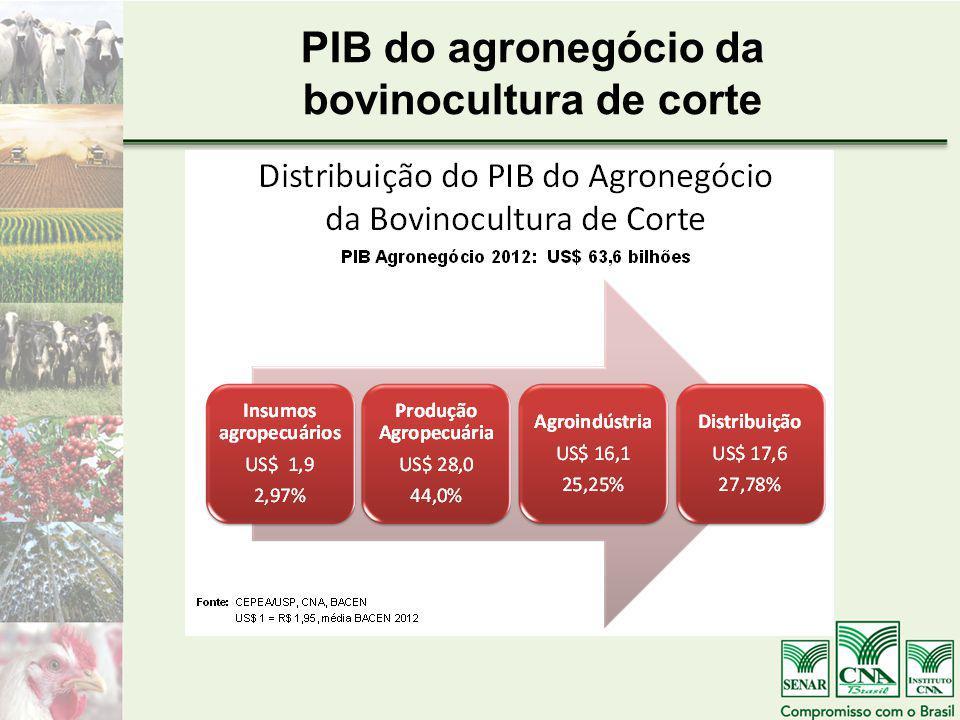 PIB do agronegócio da bovinocultura de corte