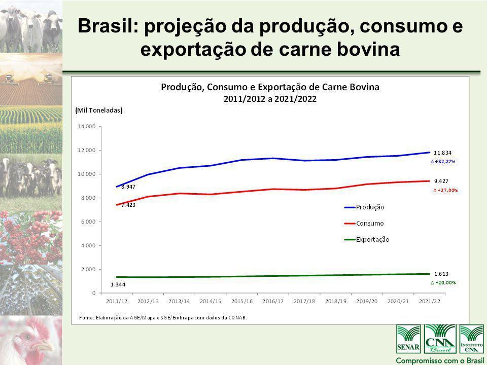 Brasil: projeção da produção, consumo e exportação de carne bovina