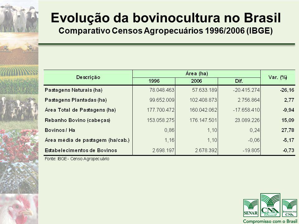 Evolução da bovinocultura no Brasil Comparativo Censos Agropecuários 1996/2006 (IBGE)