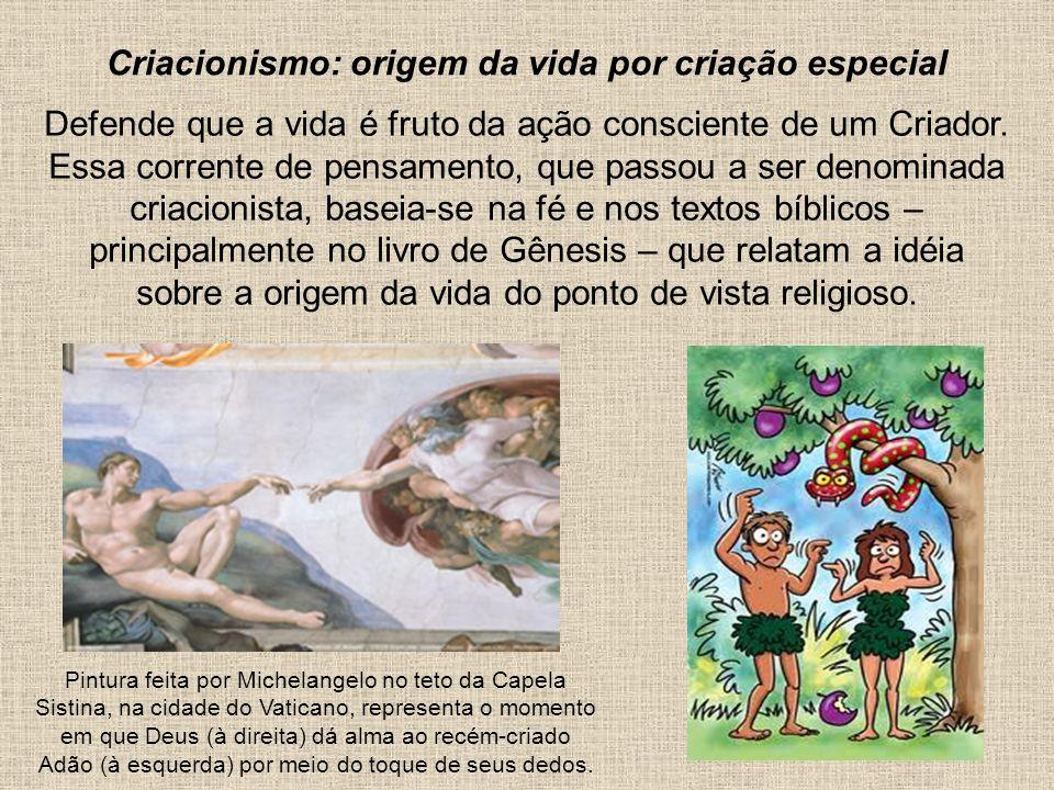 Criacionismo: origem da vida por criação especial