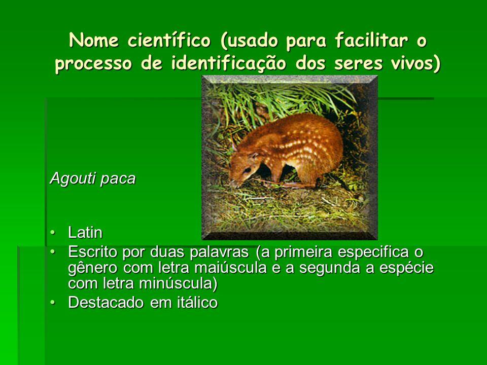 Nome científico (usado para facilitar o processo de identificação dos seres vivos)
