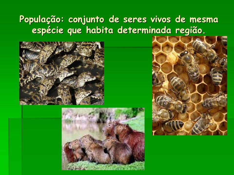 População: conjunto de seres vivos de mesma espécie que habita determinada região.