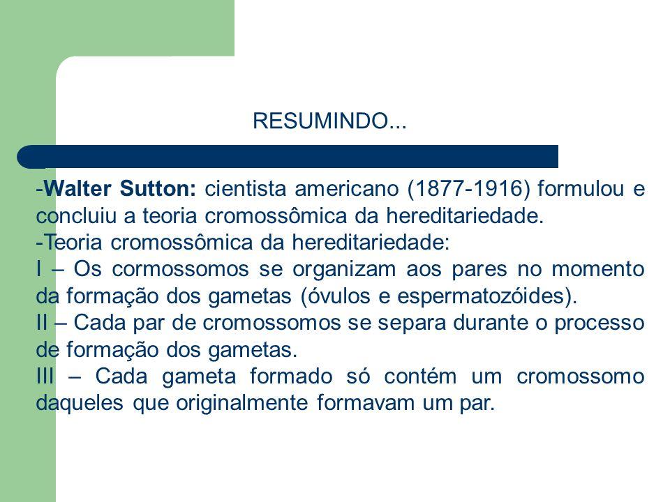 RESUMINDO... Walter Sutton: cientista americano (1877-1916) formulou e concluiu a teoria cromossômica da hereditariedade.
