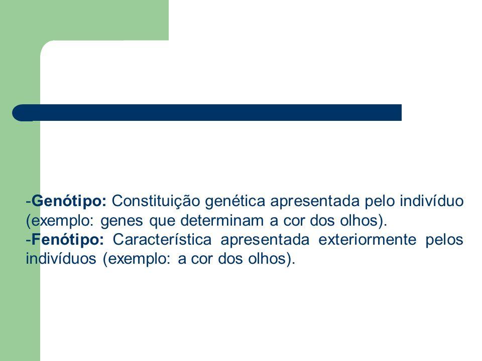 Genótipo: Constituição genética apresentada pelo indivíduo (exemplo: genes que determinam a cor dos olhos).